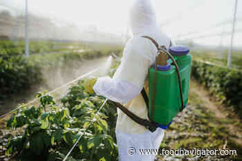 Glyphosate debate deepens as new analysis concludes herbicide 'is not carcinogenic'