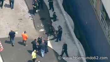 Detienen viajeros clandestinos en buque portacontenedores - Telemundo 62