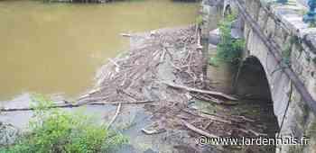 Sedan : la Meuse de nouveau salie après les crues - L'Ardennais