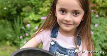 Mum told she can't trim walnut tree that could kill daughter with nut allergy