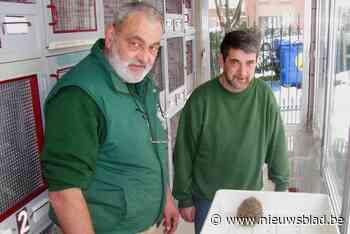 Project 'Egel volgen': wie diertje ziet met geel buisje over een stekel, kan dat best melden - Het Nieuwsblad