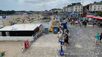 Safety officers discover 'impressive' amount of drugs in Weymouth - Dorset Echo