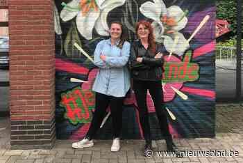 Lokale kunstenaars fleuren gemeente op met Reynaert-streetar... (Sint-Gillis-Waas) - Het Nieuwsblad