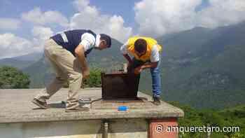 Lavar y desinfectar el tinaco previene de graves enfermedades: SSA - Periodico a.m.