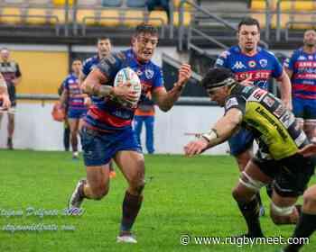 Rugby Viadana: arrivi e partenze in giallo nero - Rugby Mercato - RugbyMeet