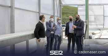 El invernadero de San Miguel de Aguayo acogerá un cultivo experimental de cannabis terapéutico - Cadena SER