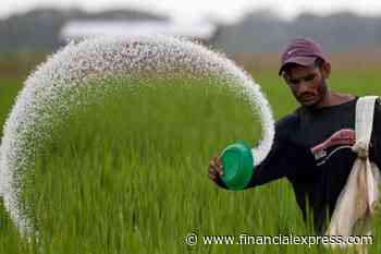 Multi-pronged strategy to check malpractices in fertilizer supply chain: Assam minister