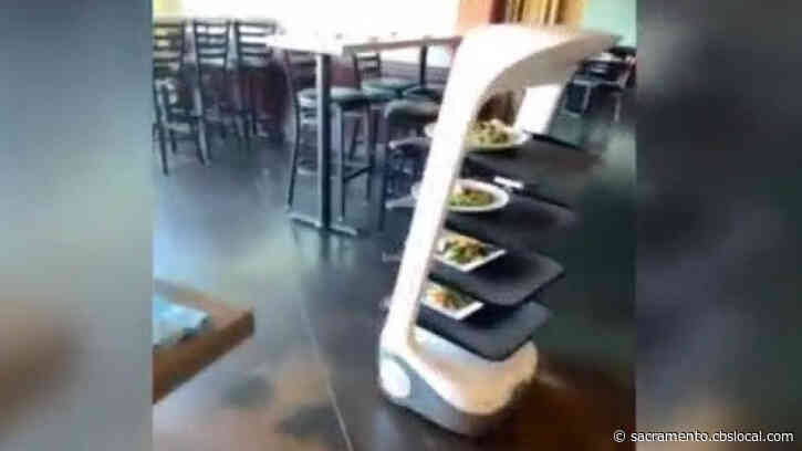 Stockton Restaurant Hires Robot As Employee Shortage Takes Toll: 'It Is Exhausting.'