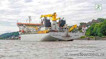 Umweltschutz: Vertiefung der Binnenelbe: Ein Korsett für den Fluss?