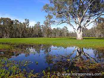 Mildura Weir winter works cancelled - Mirage News