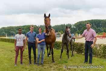 """Paard van Ines (45) en Tom (47) uit Melle naar Olympische Spelen: """"Gouden medaille is een droom"""" - Het Nieuwsblad"""
