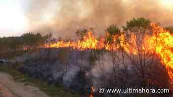 La Reserva San Rafael, de nuevo afectada por incendios - ÚltimaHora.com