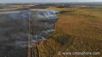Incendio afectó a parte de la Reserva San Rafael en Itapúa - ÚltimaHora.com