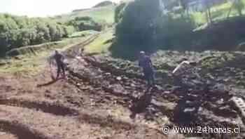 Quinta postergación de pavimento en Isla Santa María - 24Horas.cl