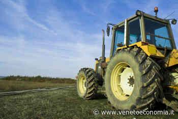 Caorle, tragico incidente sul lavoro: morto giovane operaio agricolo di 28 anni - VenetoEconomia - Venetoeconomia
