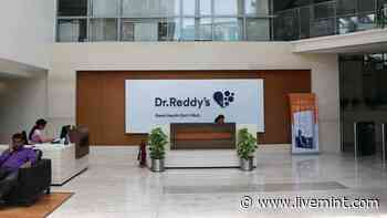 Dr Reddy's shares continue to bleed. Is it a 'buy on dip' opportunity? - Mint