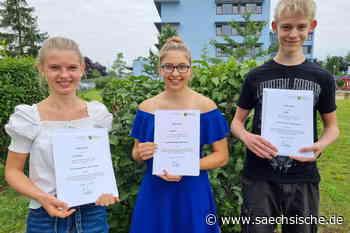 Riesa: Das sind die Stauchitzer Superschüler - Sächsische.de