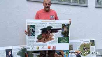 Eicher Vogelschützer stellen neue Infotafeln auf - op-online.de