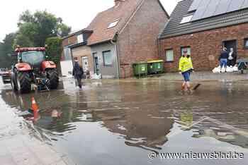 """Landbouwer voorkomt dat water huizen binnenloopt: """"Hopelijk ... (Roeselare) - Het Nieuwsblad"""