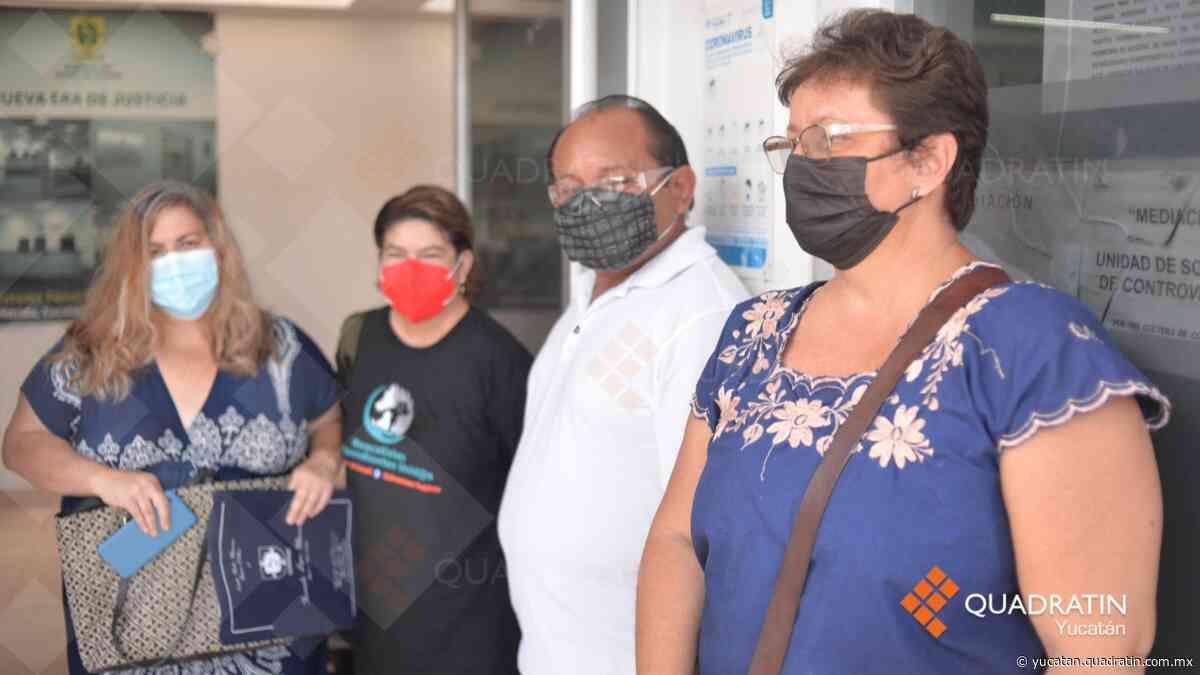Suman 5 denuncias por envenenamiento de 39 gatos en la Jesús Carranza - Quadratín - Quadratín Michoacán