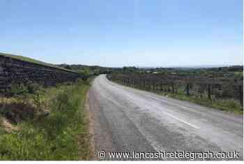 West Pennine Moors bid to build wooden shelter for alpaca herd