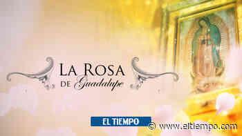 ¿De dónde salió la idea del viento de 'La rosa de Guadalupe'? - El Tiempo