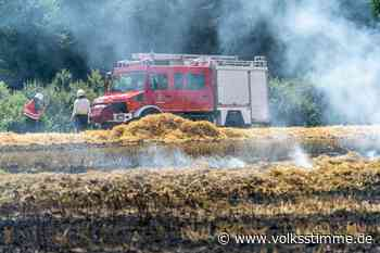 Polizei stellt Tatverdächtigen nach Ödlandbrand in Magdeburg - Volksstimme