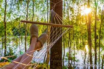 This week in BayToday+: Last chance to put your feet up with a Summer Staycation!
