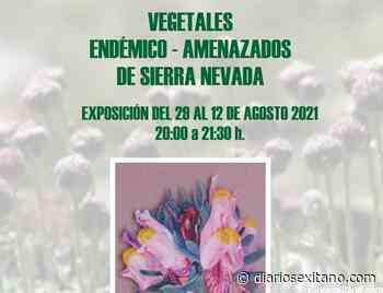 """Encarnación Saiz Guzmán expone en La Herradura una muestra de pintura sobre """"Vegetales endémicos a... - Diario Sexitano"""