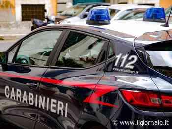 I carabinieri da De Donno durante il governo Conte, Lega all'attacco
