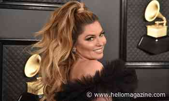 Shania Twain celebrates musical achievement in pink corset and white dress