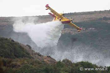Rogo Oristanese: sesto giorno di fuoco in Sardegna - Agenzia ANSA