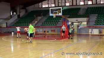 Knights Legnano, definiti i tecnici del settore giovanile - SportLegnano.it - SportLegnano.it