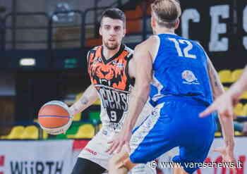 Basket Legnano Knights, la guardia titolare è Diego Terenzi - varesenews.it