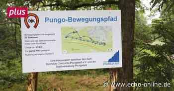 20 Stationen auf dem Weg zur Fitness in Pfungstadt - Echo Online