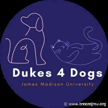 Dukes 4 Dogs bonds students with local shelter animals - The Breeze