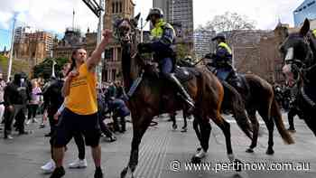 Coronavirus crisis: Alleged horse hitter refuses COVID test - PerthNow