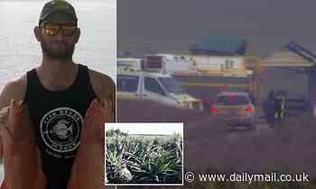 Electrical Trades Union claims Ergon are to blame after death of pineapple farmer in Rockhampton
