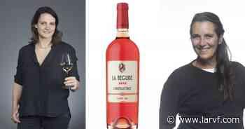 Rosé de Bandol : L'Irréductible 2020 de la Bégude, une robe qui fait causer - La Revue du vin de France