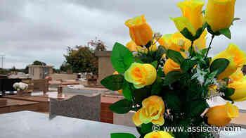 Cemitério Municipal de Assis convoca familiares responsáveis por jazigos para atualização cadastral - Assiscity