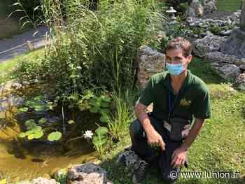 Au parc d'Isle de Saint-Quentin, il cultive sa passion de la nature - L'Union