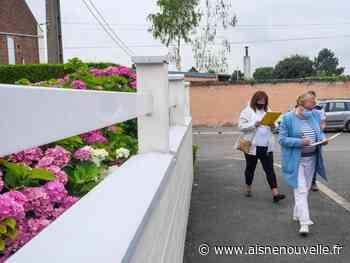 Maisons fleuries: le jury de Saint-Quentin a fait le tour des 60 candidats - L'Aisne Nouvelle