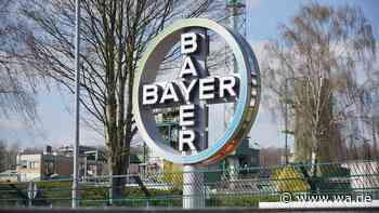 """Kläranlage wegen Unwetters an Kapazitätsgrenze / Geruchsbelästigung bei Bayer - """"Gesundheitlich unbedenklich"""" - wa.de"""