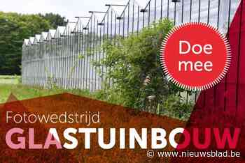 Provincie focust op onbekende serreteelt met fotowedstrijd (Wommelgem) - Het Nieuwsblad