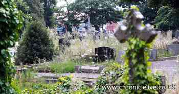Sadness over 'heartbreaking' state of Newcastle cemetery