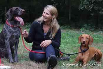 """Puppy's vertonen gedragsproblemen door lockdown: """"Laat je hondje niet opeens alleen thuis""""<BR />"""