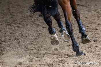 Thibo Deketelaere blijkt klasse te sterk in Grand Prix Aalter - equnews.be