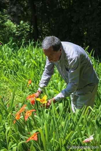Llevará a cabo UAEM Semana de las Tigridias en Tenancingo - Portal
