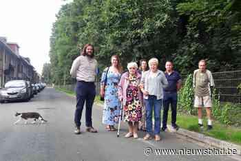 """Bewoners Wirixdreef in Niel strijden voor 'hun' bomen: """"We blijven waakzaam"""""""
