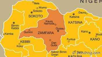 'Bandits travelling from Zamfara to Borno for terrorist training' - Punch Newspapers